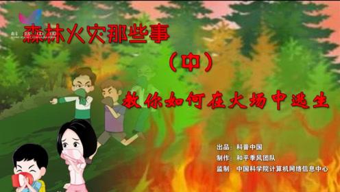 森林火灾那些事2 教你如何在火场中逃生