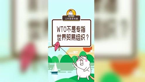 WTO不是专指世界贸易组织?