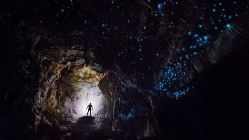 地底世界存在生物?科学家:生物链隐藏其中,生物还能自我修复