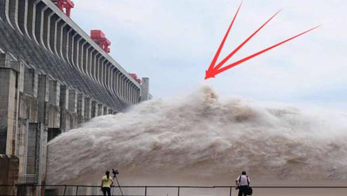 三峡大坝落差113米,鱼是怎么游上去的?看完真是大开眼界!