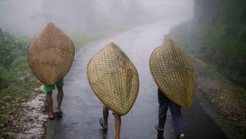 """这里被称世界""""极湿""""之地,一年有330天在下雨,村民却不愿走"""
