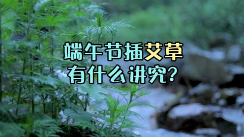 端午节插艾草有什么讲究?什么时候可以将它取下来呢?