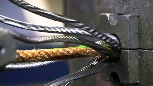 跨海大桥那么重,用的钢丝绳为什么不会断?总算搞清楚了
