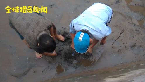 """荒废的淤泥塘总有异响,好奇村民仔细找寻,没想到这么""""惊喜""""!"""