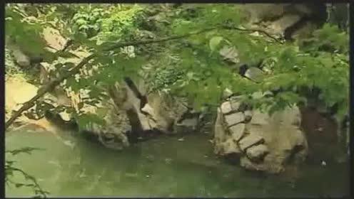 成卓文化-建筑奇观-相思江水来无源头去无踪