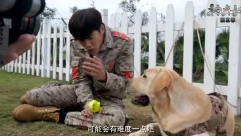 《神犬小七3》姜潮特辑:是乐观善良的少年,是敬业认真的演员