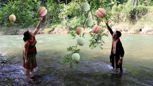 荒野求生:农村姐弟俩意外发现野生大桃树,这份量足够吃数天了