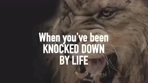 释放内心的狮子 勇敢追梦
