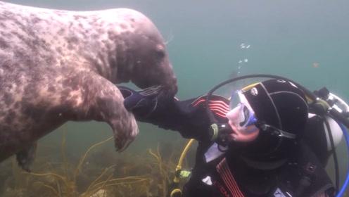 """男子在海底下潜水,突然被""""一只手""""捉住,镜头拍下全过程!"""