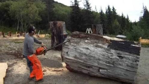 """小伙上山砍柴做饭,一根""""枯木""""火烧不断,一斧子劈开激动坏了"""