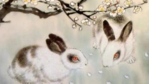 生肖兔最不该爱上的3个生肖,命中注定相生相克!最好远离