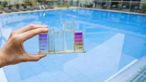 游泳池里到底有多少尿?看到实验结果,网友:不敢去游泳了