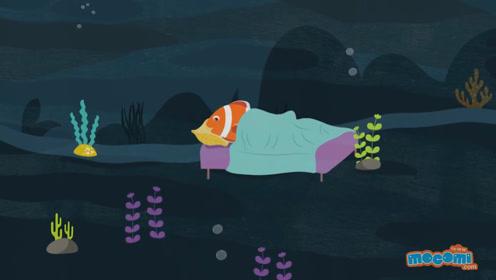 鱼会睡觉吗?真相可能令你大吃一惊