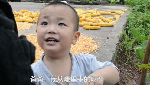 小伙偷茄子,结果茄子精变成小孩叫他爸爸,还给他找了个厉害媳妇