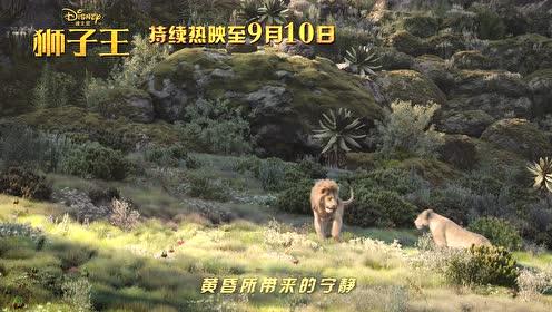 """今夜属于爱情,干了这波""""狮粮""""!《狮子王》祝七夕快乐~"""