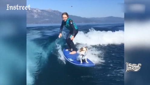 带着小狗狗一起冲浪,多么有爱的画面啊