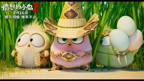 《愤怒的小鸟2》终极预告-中文配音版