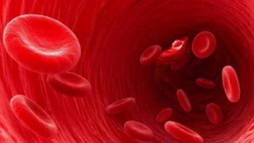 人死之后,身体里的血液究竟去哪了?看完真的不敢相信!