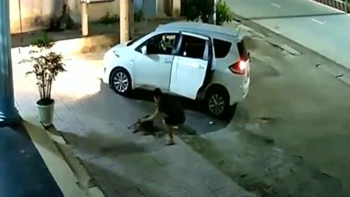 小狗在看家,殊不知死神正在靠近,监控拍下男子作案过程