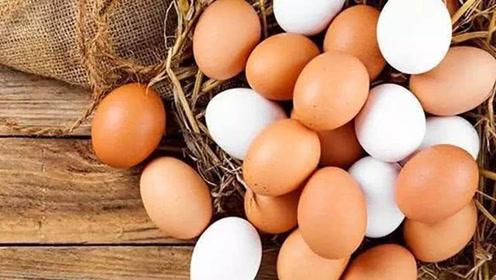 白皮鸡蛋好还是红皮鸡蛋好?专家发现新的答案,很多人都买错了