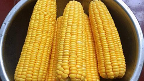 这种玉米千万不要再买了!菜贩子都不吃,赶紧提醒家人!