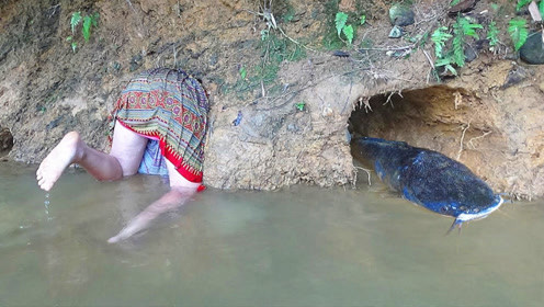 美女在河边发现异常,钻进去一看,才知道啥叫鱼窝!
