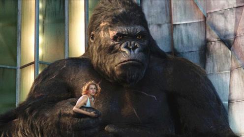 导演带美女到荒岛拍爱情片,谁知遇到大猩猩,抱着美女就跑