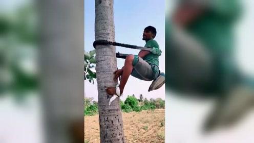 看看印度三哥是怎样上树的,一言不合就开挂啊