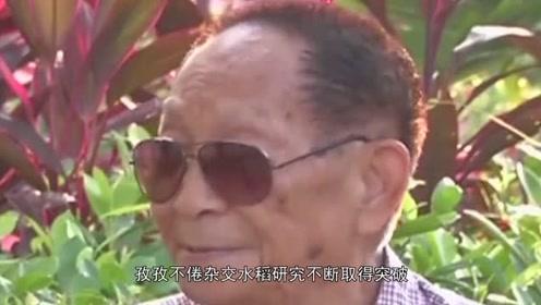 骄傲!中国杂交水稻造福全世界 ,国外种植面积七百万公顷