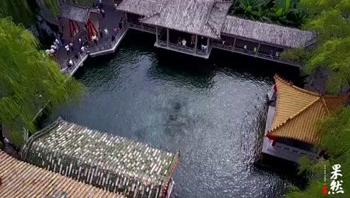 近距俯视济南趵突泉三股水,太壮观了!