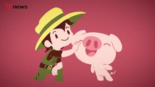 猪流感引发流感大流行?病毒是怎样跨物种传播的