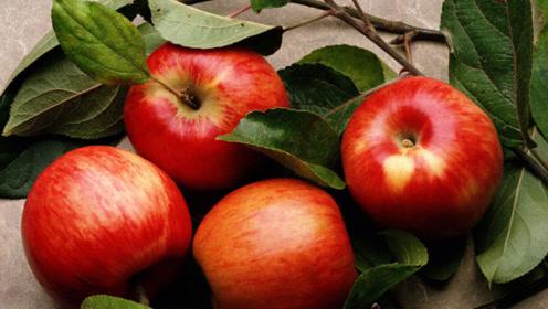 这3种水果常给孩子吃,不仅促进生长发育,还帮助孩子长个