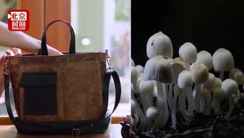 用蘑菇菠萝叶做包包!大牌进军环保材料 与皮质等价你会买单吗?