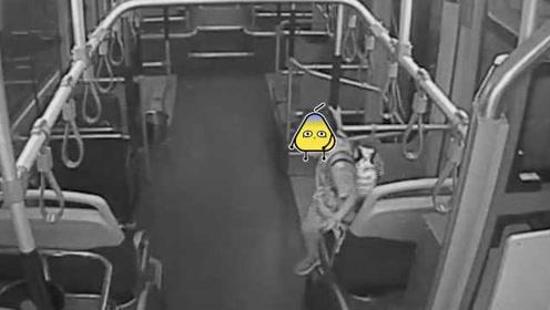 济南5岁男孩独自坐公交车,一觉醒来已经坐过站
