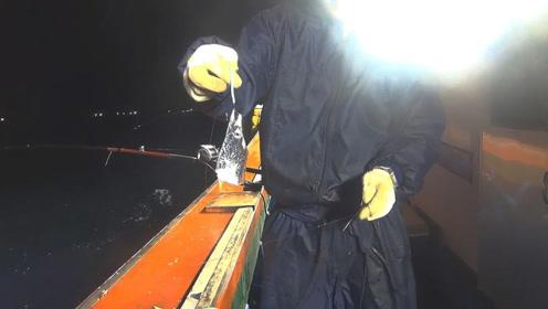 夜钓带鱼,闪闪发光的带鱼怎么只剩个鱼头?