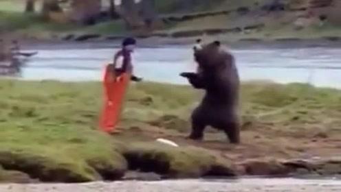 我严重怀疑这头熊是不是人假扮的