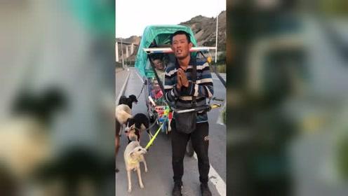 男子带着5只狗狗穿越西藏,真是太不一般了!