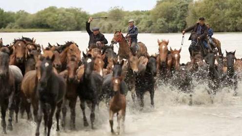赶3000匹马支援震后重建,他们历时62天从新疆到唐山