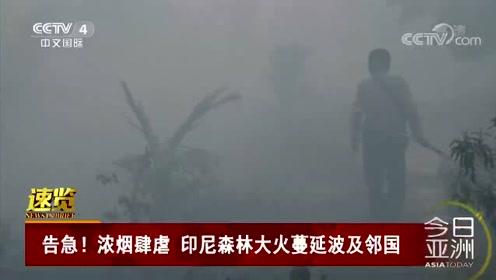 告急!浓烟肆虐 印尼森林大火蔓延波及邻国