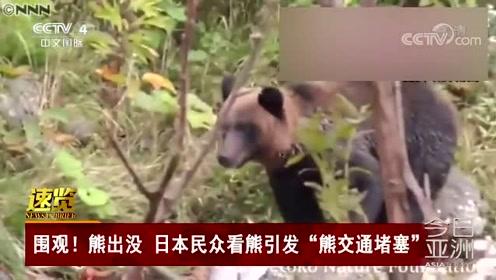 """围观!熊出没 日本民众看熊引发""""熊交通堵塞"""""""