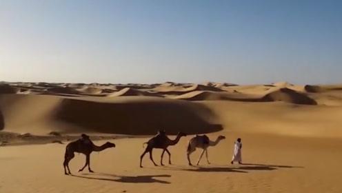 沙漠下面都是石油,为啥中国不开采?看完佩服国人智慧!