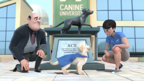 小白励志成为导盲犬,但总出错被赶出校园,最后却成为超级英雄!