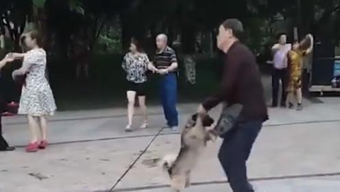 大爷的舞伴儿够奇特的,这充分地证明了你是单身狗吗