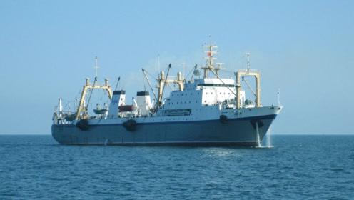 世界上最大的拖网渔船,一次捕捞可达300吨,连鲨鱼都不会放过