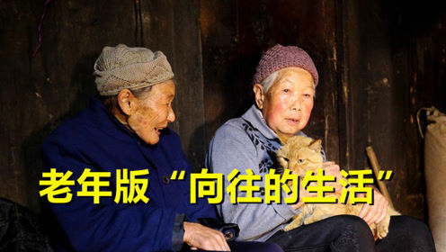 """中国7对老夫妇火了,郊区别墅""""报团养老"""",下棋聊天好不自在"""