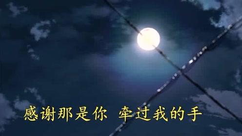 天鹅合唱团《可惜不是你》配上唯美动画,美哭了