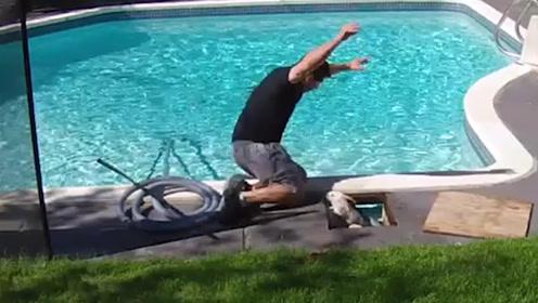 """滑稽!加拿大男子清理泳池 被突然蹦出的""""堵塞物""""吓得直接落水"""