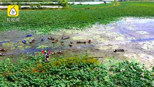 舟行碧波喜丰收!泗洪3000亩水上牧场丰收,农户喊号开采