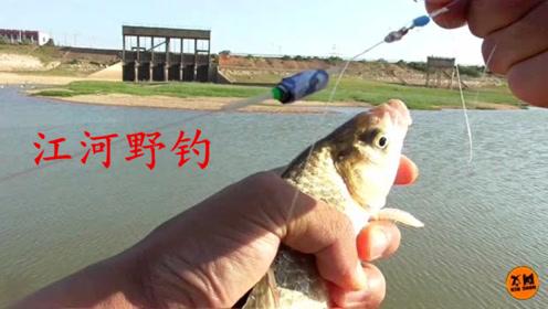 江河野钓:这个白天被人嫌弃的钓点,小伙傍晚却有意外收获