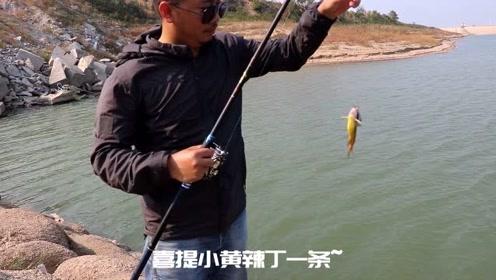 黄颡不愧是最好钓的鱼,新手筏竿下串钩就能钓得到